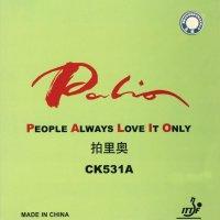 PALIO CK531A NEW